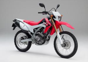 250L 300x213 Honda apresenta sua munição para 2013. Veja os modelos!