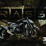 Kawasaki Ninja 250 por Brasse 31 BLK