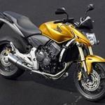 hornet classica 150x150 5 dicas para comprar sua primeira moto clássica